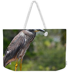 Weekender Tote Bag featuring the photograph Eye To Lens by DigiArt Diaries by Vicky B Fuller