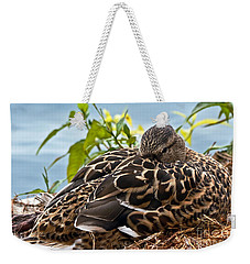 Weekender Tote Bag featuring the photograph Eye Watching You by Kate Brown