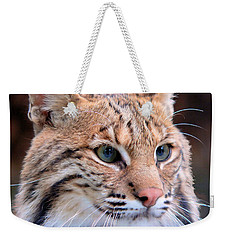 Weekender Tote Bag featuring the photograph Eyes Of A Lynx by Rosalie Scanlon