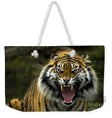 Eyes Of The Tiger Weekender Tote Bag by Mike  Dawson