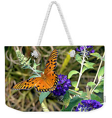 Weekender Tote Bag featuring the photograph Eyes On A Butterfly by Sue Melvin