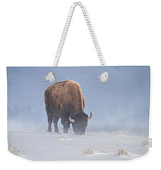 Weekender Tote Bag featuring the photograph Faces The Blizzard by Jack Bell