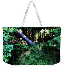 Weekender Tote Bag featuring the photograph Fairy Forest by Jamie Lynn