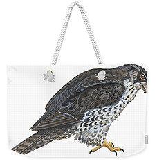 Falcon Weekender Tote Bag by Anonymous