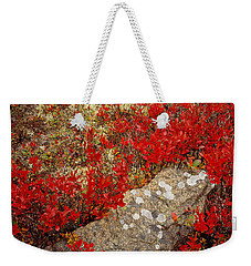 Fall Blueberries And Moss Weekender Tote Bag