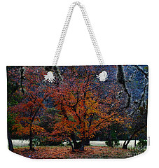 Fall Foliage At Lost Maples State Park  Weekender Tote Bag
