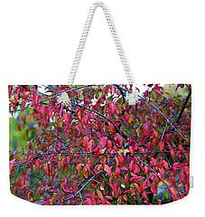 Fall Foliage Colors 05 Weekender Tote Bag