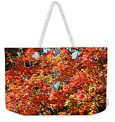 Fall Foliage Colors 22 Weekender Tote Bag