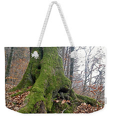 Weekender Tote Bag featuring the photograph Fall In Burgdorf by Felicia Tica