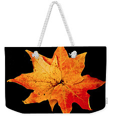 Weekender Tote Bag featuring the photograph Fall Leaf Trio by Dee Dee  Whittle