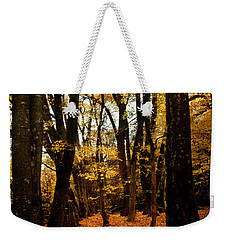 Fall Scene In Bidwell Park Weekender Tote Bag