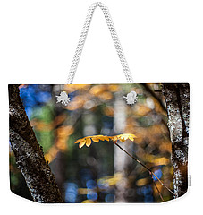 Weekender Tote Bag featuring the photograph Fall Suspended by Aaron Aldrich