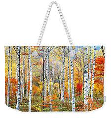 Fall Trees, Shinhodaka, Gifu, Japan Weekender Tote Bag