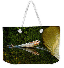 Weekender Tote Bag featuring the photograph Falling Tree Reflections by Debbie Oppermann
