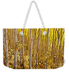 Weekender Tote Bag featuring the photograph Fall's Golden Light by Steven Reed