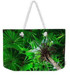Fan Palm Tree Of The Rainforest Weekender Tote Bag