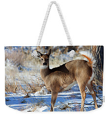 Weekender Tote Bag featuring the photograph Fancy Pants by Jim Garrison