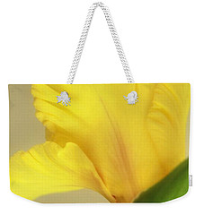 Fanning Glady Weekender Tote Bag by Deborah  Crew-Johnson