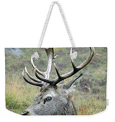 Stag Party The Series Father To Be. Weekender Tote Bag by Linsey Williams