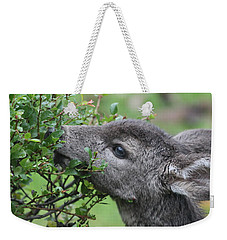 Fawn In The Rain Weekender Tote Bag