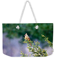 Weekender Tote Bag featuring the photograph Female Cardinal In Snow by Eleanor Abramson