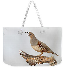 Female Gambel's Quail Weekender Tote Bag