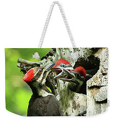 Female Pileated Woodpecker At Nest Weekender Tote Bag by Mircea Costina Photography
