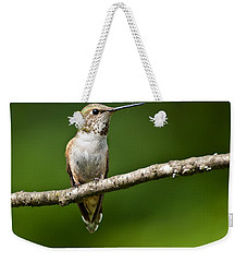 Weekender Tote Bag featuring the photograph Female Rufous Hummingbird In A Tree by Jeff Goulden
