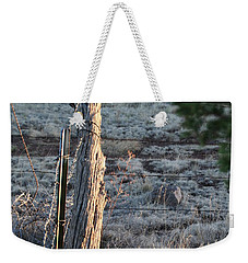 Weekender Tote Bag featuring the photograph Fence Post by David S Reynolds