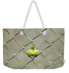 Weekender Tote Bag featuring the photograph Fence Sitter by Arthur Fix