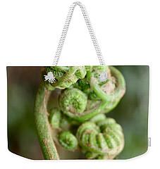 Fern Bud Weekender Tote Bag by Venetia Featherstone-Witty