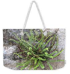 Fern Tendrils  Weekender Tote Bag
