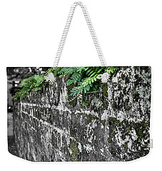Ferns On Old Brick Wall Weekender Tote Bag