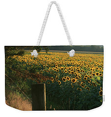 Field Dreams No.2 Weekender Tote Bag