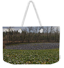 Weekender Tote Bag featuring the photograph Field Of Color 2 by Belinda Greb