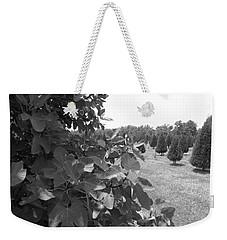 Fig Tree Weekender Tote Bag
