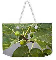 Weekender Tote Bag featuring the photograph Figalicious by David Millenheft
