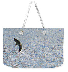 Fighting Chinook Salmon Weekender Tote Bag by Mike  Dawson