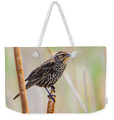 Weekender Tote Bag featuring the photograph Finding Summer by Steven Santamour