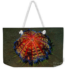 Weekender Tote Bag featuring the photograph Fire Sea Urchin by Sergey Lukashin