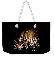 Weekender Tote Bag featuring the photograph Fireworks 1 by Susan  McMenamin
