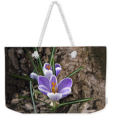 First Crocus Of Spring Weekender Tote Bag