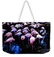 Weekender Tote Bag featuring the photograph Flamingo - Florida - Animals by Susan Carella
