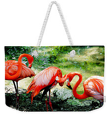Flamingo Friends Weekender Tote Bag