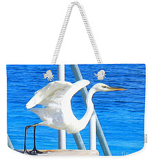 Flaps Up Weekender Tote Bag by Patti Whitten