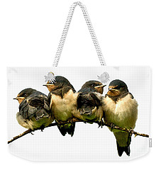 Fledglings Weekender Tote Bag by Liz  Alderdice