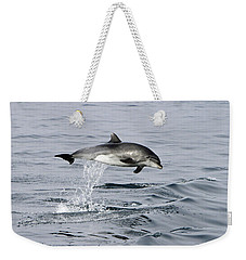 Flight Of The Dolphin Weekender Tote Bag
