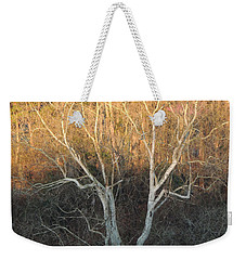 Weekender Tote Bag featuring the photograph Flint River 12 by Kim Pate