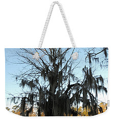 Weekender Tote Bag featuring the photograph Flint River 13 by Kim Pate
