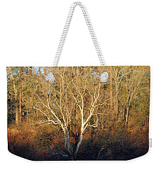 Weekender Tote Bag featuring the photograph Flint River 16 by Kim Pate